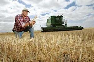 Експортният потенциал за пшеницата в източните щати на Австралия ще бъде изчерпан до април