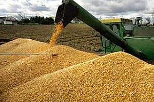 Експортният потенциал на Казахстан е 7-8 млн. тона зърно