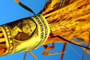 Тенденции за износа на американско зърно