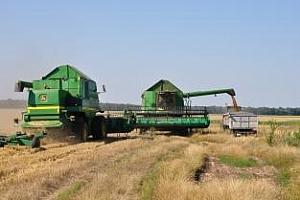Аржентина понижава прогнозата за реколтата от пшеница до 11,1 млн. тона