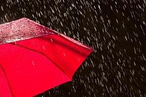 """Сутрешно кафе: Прогнозата за дъжд в САЩ """"отнесе"""" успеха от търга в Египет"""