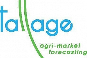 Strategie Grains вдигна още оценките за европейския износ на пшеница