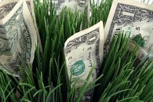 Банките очакват растеж на цените на пшеницата в началото на 2013 г.