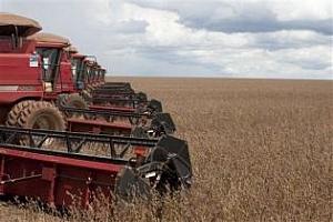 Бразилия: повишена е прогнозата за производството и износа на соя през 2012/13 МГ