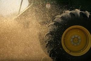 Руска пшеница от новата реколта вече се предлага за износ