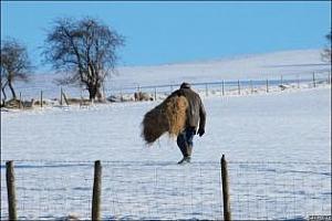 Агропрогноза: Предстои рязък спад на температурите в Европа