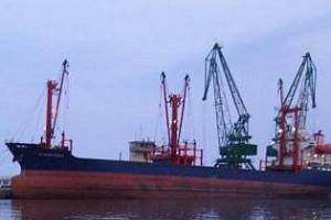 Увеличен износ на пшеница и зърнени култури от порт Балчик