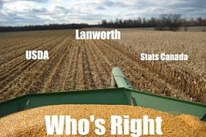 Lanworth понижи оценката за бъдещата реколта от пшеница в САЩ