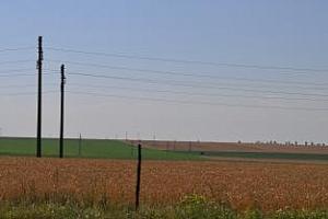 Strategie Grains понижи прогнозите за бъдещата реколта от пшеница в ЕС