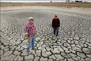 Австралия: Сушата бавно вдига световните цени на пшеницата