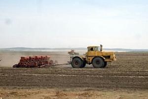 Площите със зърнени култури в Казахстан ще бъдат намалени