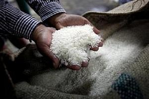 Износът на ориз от Тайланд падна до 12-годишен минимум
