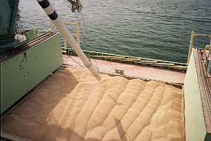 Русия ще понижи износа през февруари до 200-250 хил. тона
