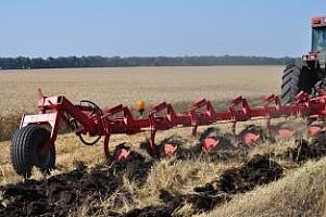 Половината одобрени проекти по мярка 121 са за производство на пшеница, царевица, слънчоглед, ечемик и рапица