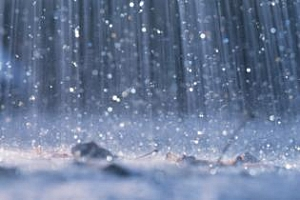 Агропрогноза: Твърде влажно в Европа