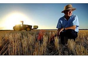 Понижение на средните цени за пшеница и соя в САЩ