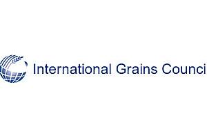 IGC прогнозира ръст на реколтата от пшеница в света с 4%