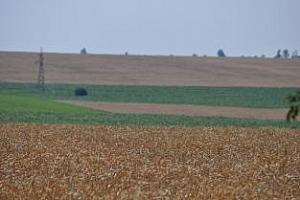 Завишеното подпомагане за първите хектари