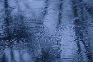 Агро прогноза: Дъждовно и студено време