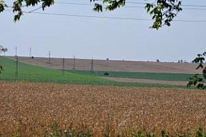 Strategie Grains: Прогнози за пшеница и царевица - сезон 2013/14