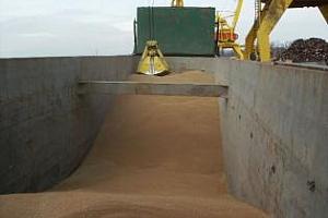 През този сезон Великобритания ще увеличи вноса на пшеница до 2,26 млн. тона