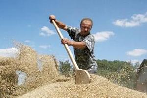 Сутрешно кафе: Понижение на борсите в ЕС и САЩ