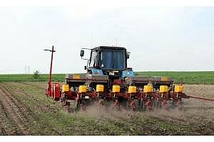 Сеитбата на слънчогледа в Украйна с рекордни темпове