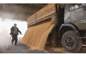 Беларус и Казахстан ще сключат споразумение за сътрудничество в селското стопансто