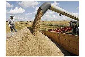 Русия изнася най-много зърно в Турция през април 2013 г.