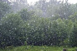 Сушата в Румъния ще намалее