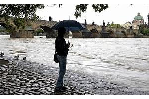 Сутрешно кафе: Наводненията в Европа предизвикаха тревога на пазара на зърно и цените се повишиха