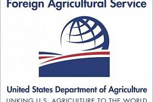 България: Времето промени прогнозата за реколтата от зимни зърнени култури