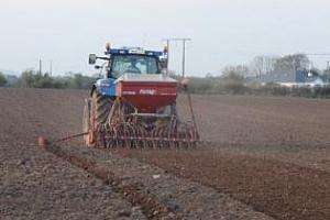САЩ приключват сеитбата на царевица