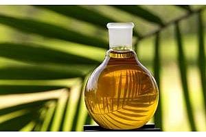 Цената на палмовото олио пада
