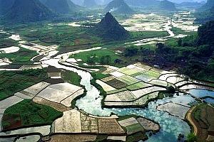 Китай: дефицитът на аграрна продукция расте въпреки увеличеното производство на зърно.