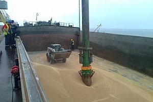 Бюлетин за износа на зърнени и маслодайни култури от пристанище Варна 8-11 юли