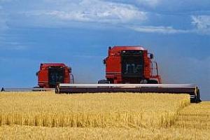 Доброто време в Русия спомага за бърза жътва при пшеницата, рапицата и ечемика