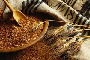 Алжир намалява вноса на пшеница