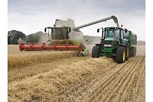 Украйна е изнесла 17,3 млн. тона зърно тази маркетингова година