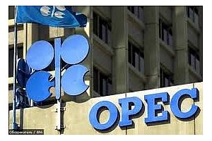 Поевтиняването на петрола вчера повлече надолу и цените на земеделските култури