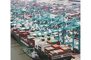 Индонезия ще увеличи износа на палмово масло за 2012 до 18,5 млн. тона