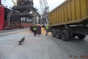 Експорт на зърно и маслодайни от пристанище Варна 10-15 септември