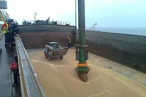 Експорт на зърно и маслодайни култури от пристанище Варна 3-7 март