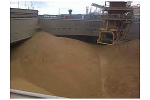 Експорт на зърно и маслодайни култури от пристанище Варна 10-14 март