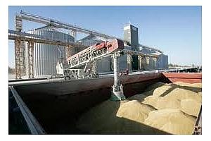 Експорт на зърно и маслодайни култури от пристанище Варна 14-17 март