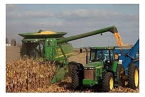 Израел с успешен търг за 65 кмт царевица