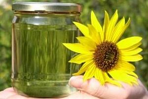 За 2012/13МГ производството на слъчногледово масло в Украйна ще бъде 3,5-3,6 млн. тона