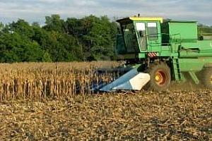 Пшеничните фючърси паднаха на борсите в Чикаго