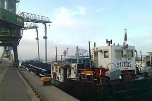 Експорт на зърно и маслодайни култури от пристанище Варна 5-11 май