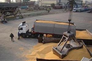 Експорт на зърно и маслодайни култури от пристанище Варна 25 май-1 юни
